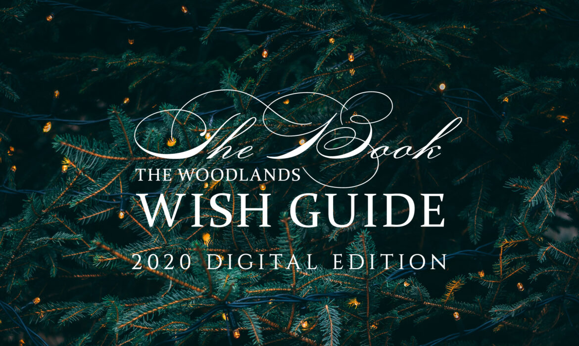 2020 Wish Guide WebBanner